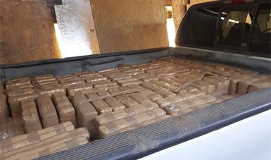 PGR en Baja California asegura casi media tonelada de marihuana