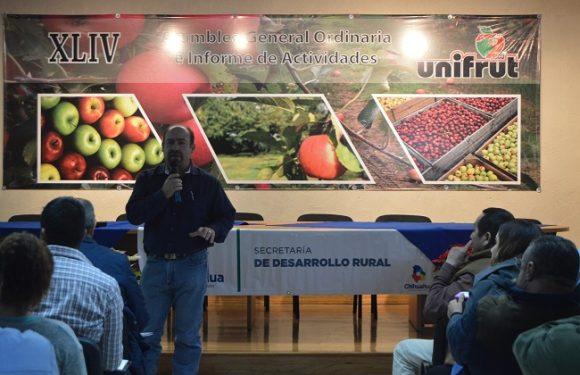 Apoyarán 35 mil hectáreas de cultivos en la Tarahumara, Chihuahua, Chih.