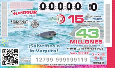 Emite Lotería Nacional boleto con imagen de vaquita marina