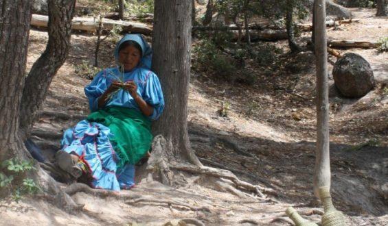Visita : Chihuahua, el Estado más grande la República mexicana