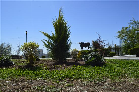 Chihuahua | Reforesta Mantenimiento Urbano alrededores del kiosco de El Palomar