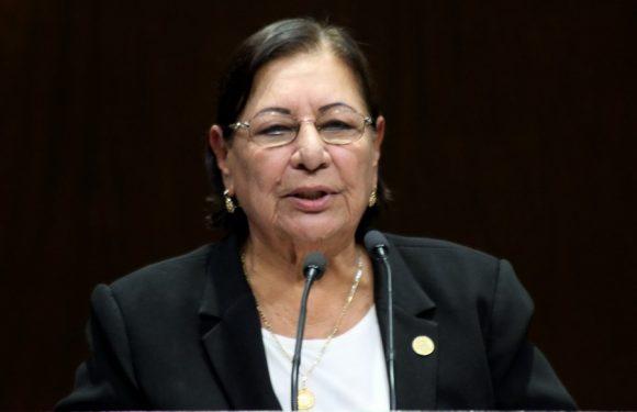 México | Propone diputada que fronteras de México sean supervisadas y controladas por el Estado, y no sólo vigiladas