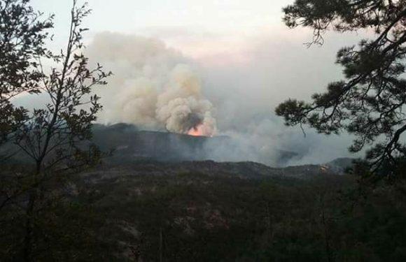 Madera | Coordina Proteccion Civil estatal acciones para sofocar incendio en Madera