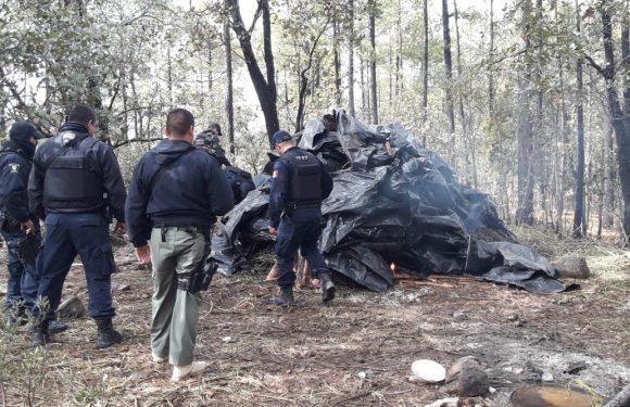 Encuentran narco campamento en Urique, encuentran 200 kg de mariguana